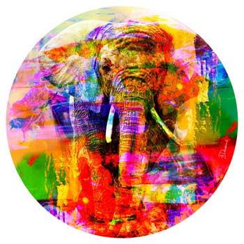 Elephant Coloured AluArt
