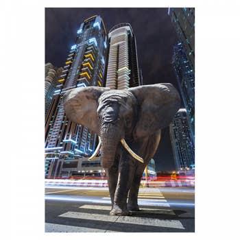 Elephant in City AluArt
