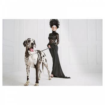 Woman & Dog AluArt