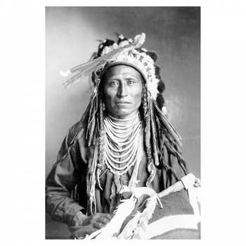 Shoshone AluArt