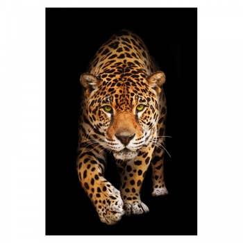 Panther AluArt