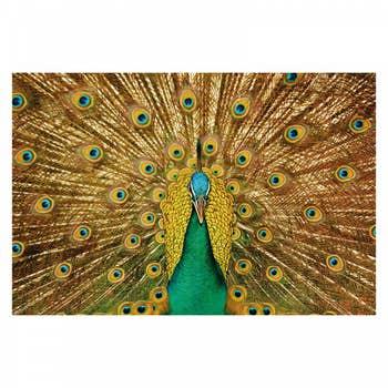 Brave Peacock Wall Art