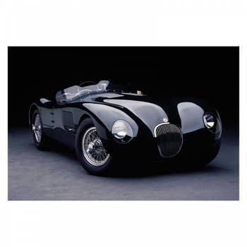 Jaguar C-Type AluArt
