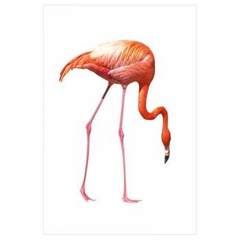 Flamingo Seeking AluArt