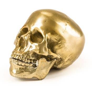 Wunderkammer Gold Human Skull