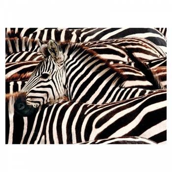 Zebra Wall Textile