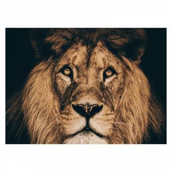 Portrait Lion Wall Textile
