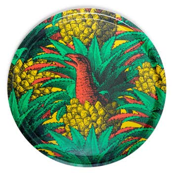 Anananosaure Round Tray