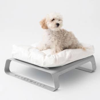 Montreal Grey Pet Bed
