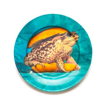 Porcelain Plate Toad