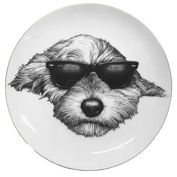 Sidney Plate